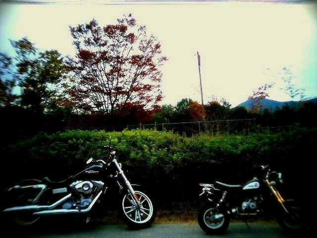 kk-2011110320013.jpg